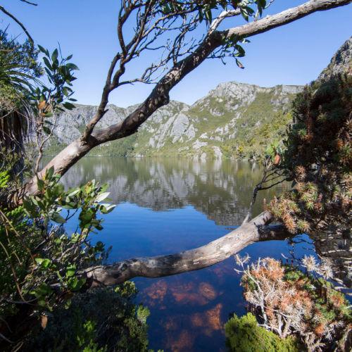 Dove Lake Cradle Mtn Tas